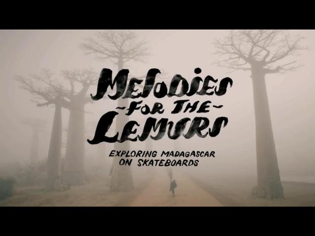 "Тизер ""Melodies for the Lemurs"""